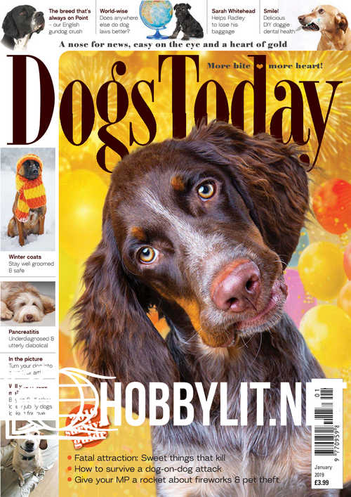 Dogs Today – January 2019