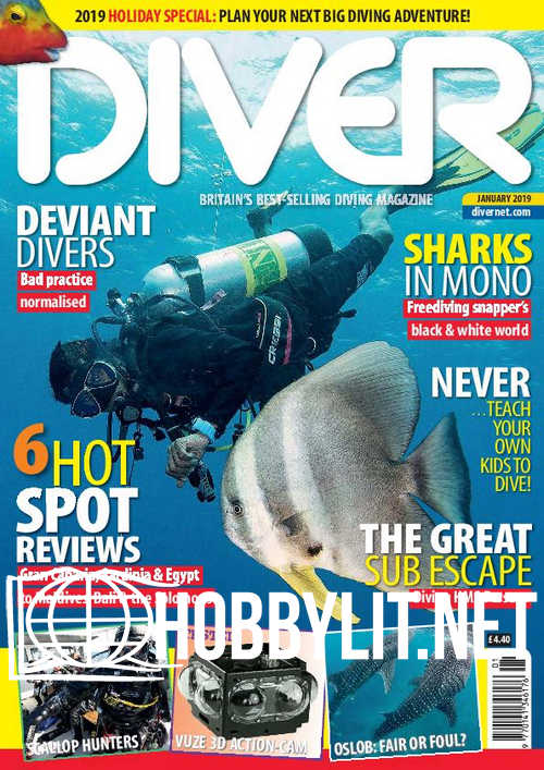 Diver – January 2019
