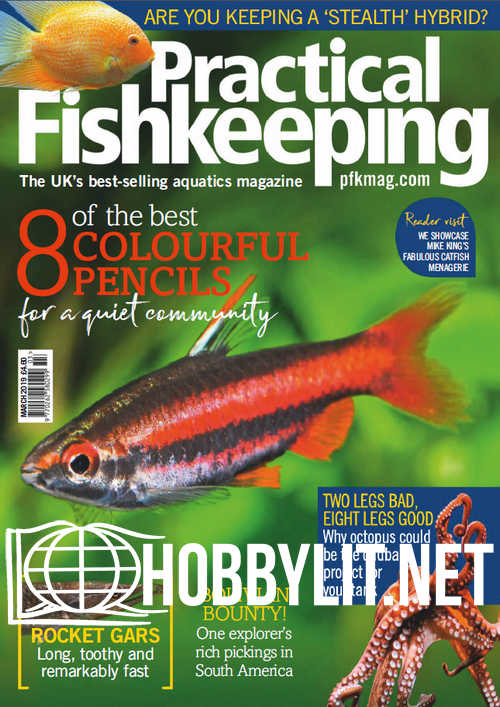Practical Fishkeeping - March 2019
