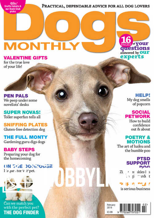 Dogs Monthly - February 2019