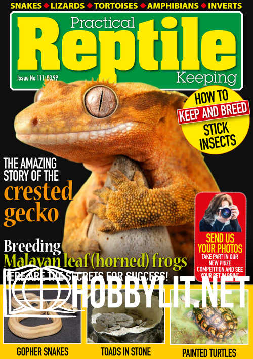 Practical Reptile Keeping - February 2019