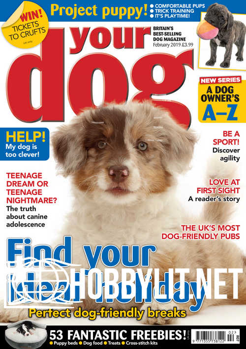Your Dog - February 2019