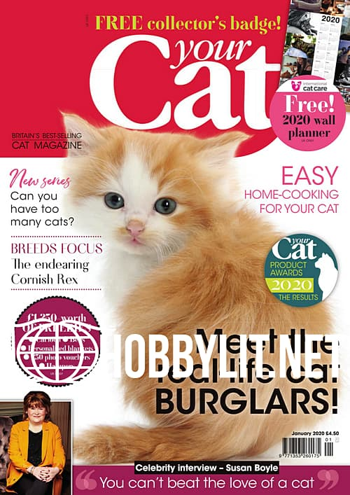 Your Cat - January 2020